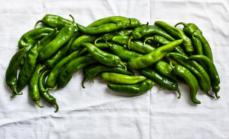 chiles iv