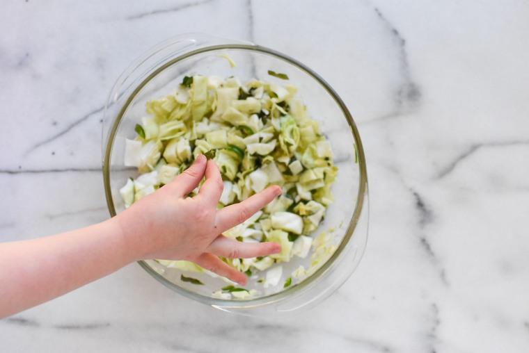 cabbage iv