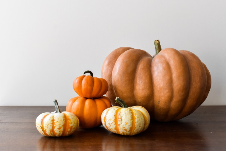 pumpkin-grouping
